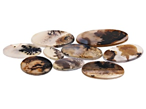 Dendritic Agate Oval Cabochon Set of 9 109.79ctw