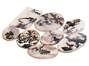 Dendritic Agate Rectangle and Oval Cabochon Set of 8 70.72ctw