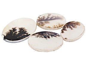 Dendritic Agate Oval and Round Cabochon Set of 4 42.16ctw