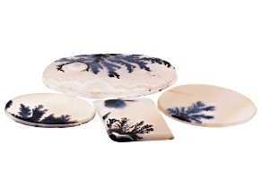 Dendritic Agate Mixed Shape Cabochon Set of 4 42.16ctw