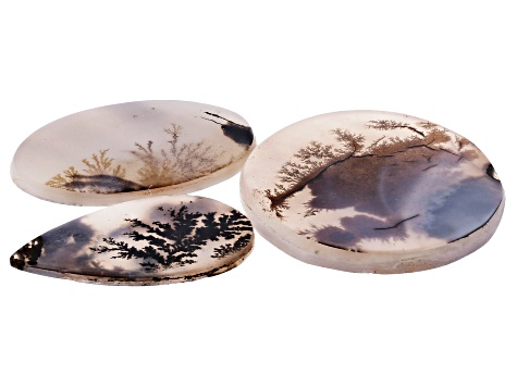 Dendritic Agate Mixed Shape Cabochon Set of 3 43.77ctw