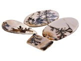 Dendritic Agate Mixed Shape Cabochon Set of 4 44.24ctw