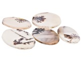 Dendritic Agate Oval and Round Cabochon Set of 5 55.47ctw