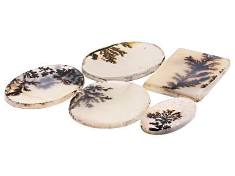 Dendritic Agate Rectangle and Oval Cabochon Set of 5 37.43ctw