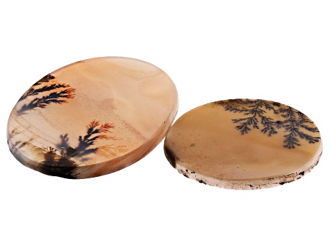 Dendritic Agate Round and Oval Cabochon Set of 2 30.46ctw