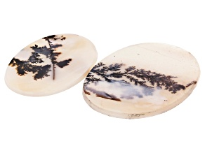 Dendritic Agate Oval Cabochon Set of 2 49.74ctw