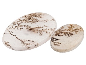 Dendritic Agate Oval Cabochon Set of 2 21.12ctw