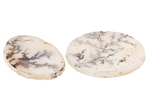 Dendritic Agate Oval and Round Set of 2 17.46ctw