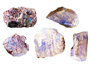 Opalised Plant Fossils Free Form Set
