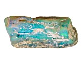 Opalised Plant Fossil Free Form