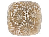 Coral Petrified 16mm Square Cushion Cabochon 6.75ct