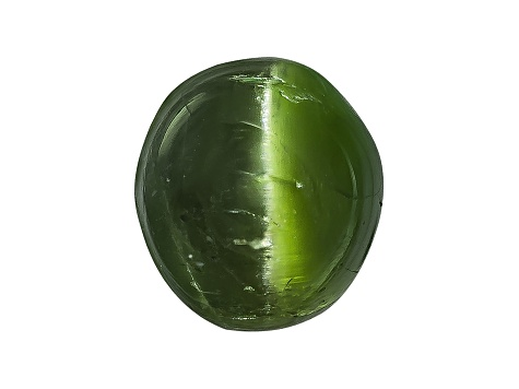 Chrome Diopside Cats Eye Round Cabochon 1.00ct