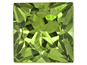 Garnet Demantoid 4.5mm Square Princess Cut .50ct
