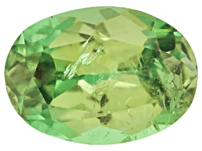 Garnet Demantoid 6x4mm Oval .50ct