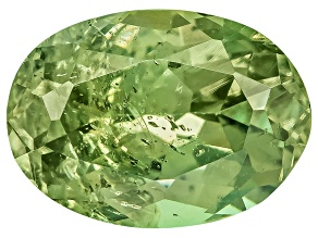 Garnet Demantoid 7x5mm Oval 1.00ct