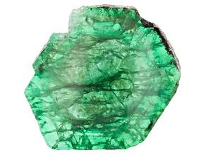 Emerald Free Form Slice 29.00ct