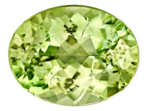 Euclase 18.15x14.12x9.11mm Oval 14.48ct