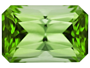 Green Tourmaline 10.32x6.88mm Rectangular Octagonal Radiant Cut 3.04ct