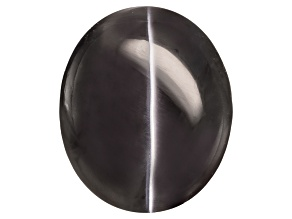 Sillimanite Cats Eye 11.85x9.9mm Oval Cabochon 7.69ct