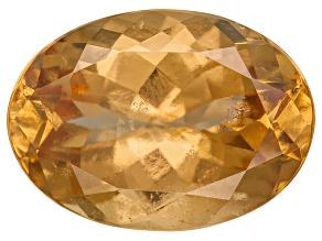 Garnet Hessonite 13.69x9.86mm 6.07ct