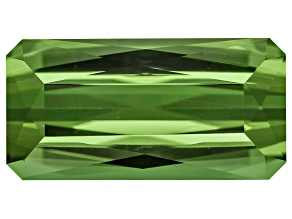 Green Tourmaline 12.45x6.31mm Rectangular Octagonal 3.18ct