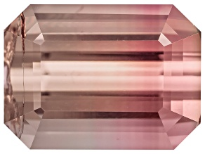 Bi-Color Tourmaline 8.21x6.07mm Emerald Cut 2.04ct