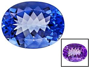 Blue Color Change Fluorite 19.75ct 20x15mm Oval
