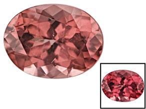 Masasi Bordeaux Garnet Color Shift 1.85ct 8.5x6.5mm Oval