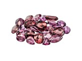Grape and raspberry color Garnet Rhodolite Mixed Shape Parcel 20.00ctw