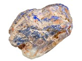 Lightning Ridge Opalised Plant Fossil Free Form Parcel 201.50ct