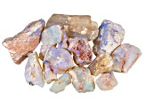 Lightning Ridge Opalised Plant Fossil Free Form Parcel 75.00ctw