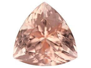 Morganite 13mm Trillion 6.60ct