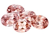 Blush Pink Zircon 8x6mm Oval Set of 5 8.84ctw