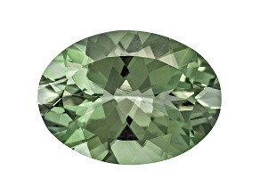 Prasiolite 18x13mm Oval 8.50ct