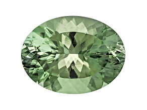 Prasiolite 20x15mm Oval 12.50ct