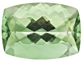 Prasiolite 18x13mm Rectangular Cushion 13.00ct
