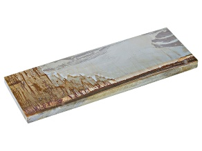 Paesina Pietra 10x7 Centimeters Free Form Slice