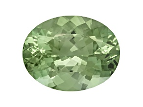 Prasiolite 22.19x17.25mm Oval 22.24ct