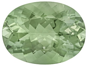 Prasiolite 20x15mm Oval 15.70ct