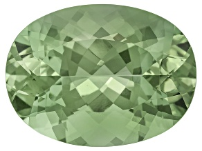 Prasiolite 20x15mm Oval 16.33ct