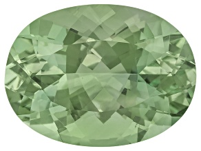 Prasiolite 20x15mm Oval 16.36ct