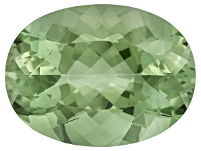 Prasiolite 20x15mm Oval 17.05ct