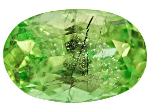 Peridot Ludwigite included Oval 3.00ct