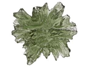 Moldavite 20x16mm Specimen 1.91g