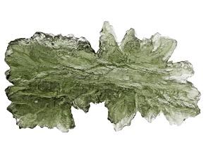 Moldavite 30x25mm Specimen 3.4g