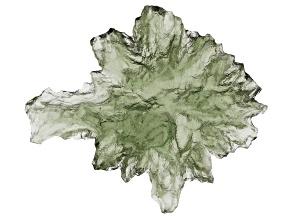Moldavite 20x15mm Specimen 1.41g