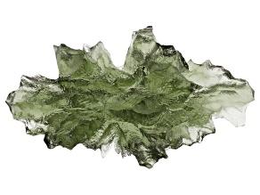 Moldavite 20x15mm Specimen 1.4g