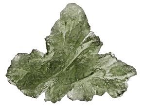 Moldavite 20x15mm Specimen 1.8g