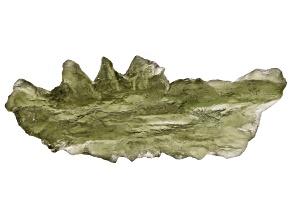 Moldavite 35x15mm Specimen 2.0g