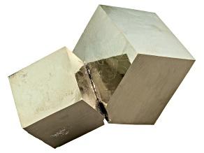 Pyrite Mineral Specimen Medium Cube